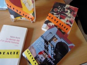 roman adulte mars 2014 (6)