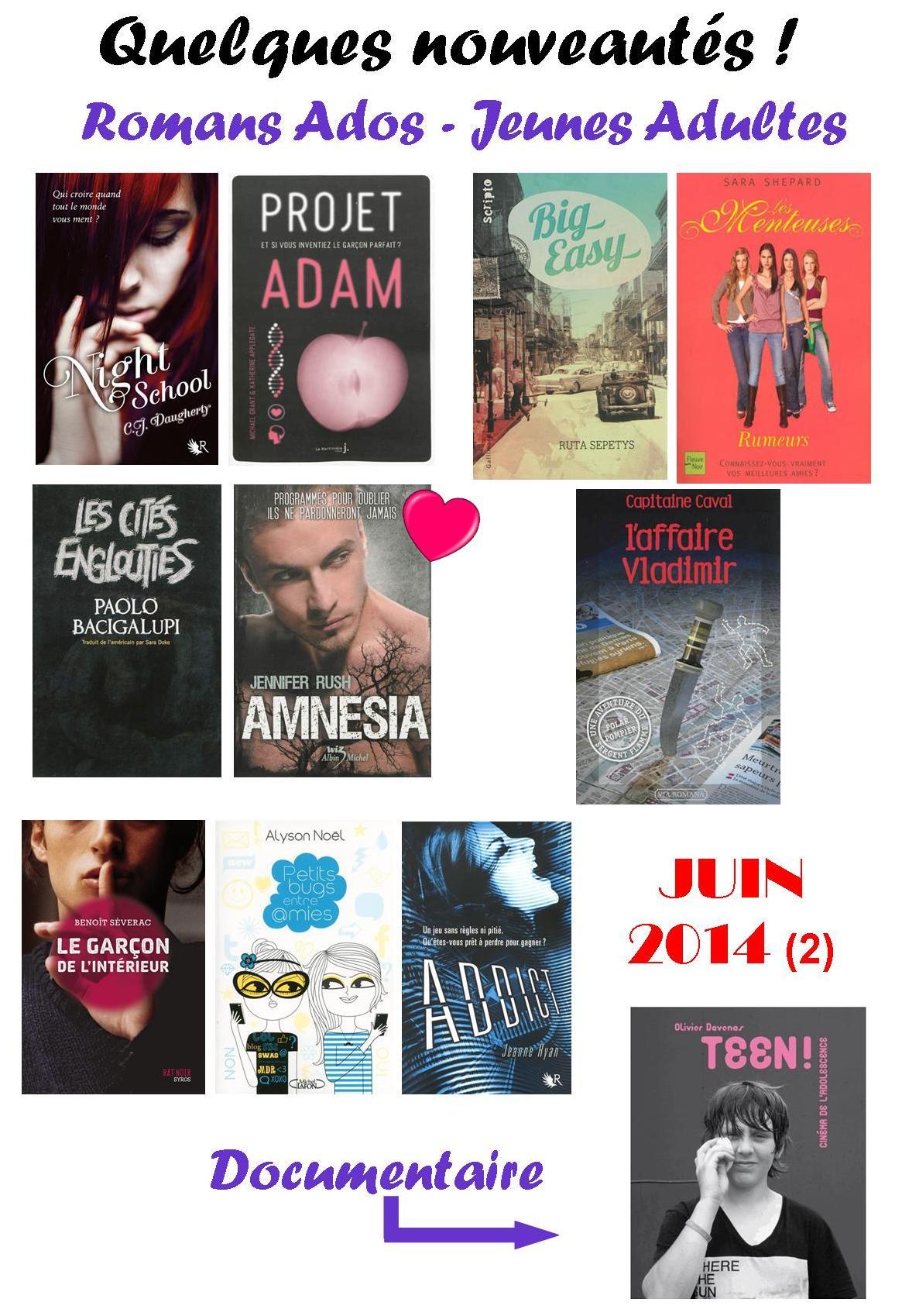 Jeunes romans romantiques pour adultes