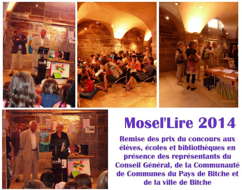 Mosel'Lire 2014 (1)