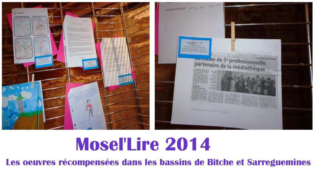 Mosel'Lire 2014 (4)
